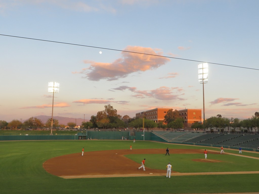 40th 2014 Baseball Tucson Arizona Photo