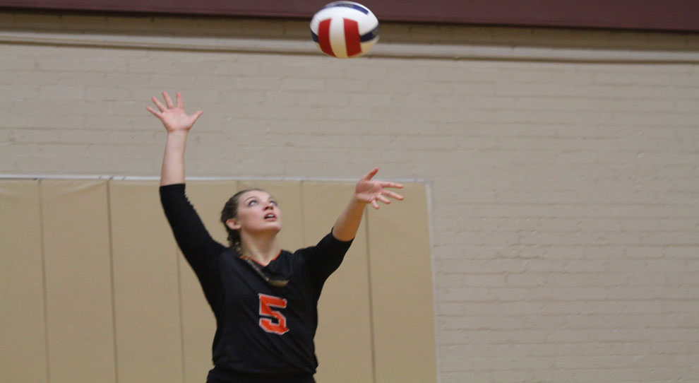 Photo for Jimmies fall to Viterbo